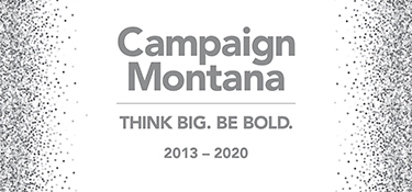 text reads: Campaign Montana THINK BIG. BE BOLD. 2013 to 2020